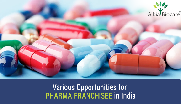Various Opportunities for Pharma franchisee in India